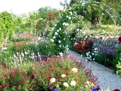 Jardín de rosas tradicional en Jávea (Alicante)