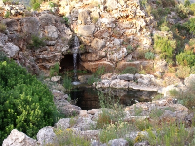 Natural pond-pool with rockery in La Sella (Pedreguer, Alicante)
