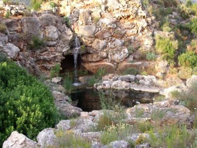 Estanque-piscina biológica con rocalla en la Urbanización La Sella (Pedreguer, Alicante)