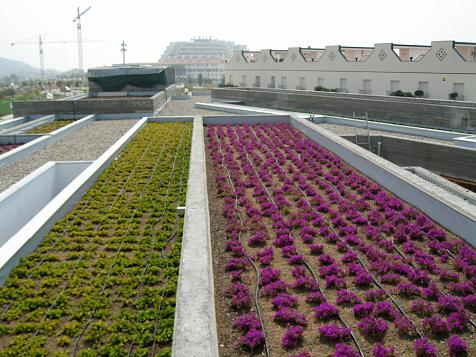 Green roof in Sitges (Barcelona)