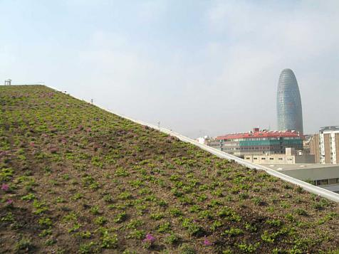 Sloping green roof in Barcelona