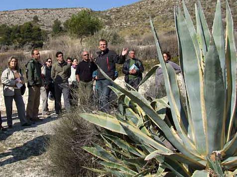 Valencian legislation on invasive plants
